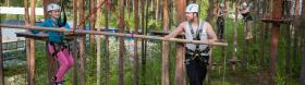 Treetop-seikkailupuisto